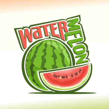 Vector illustration on the theme of watermelon Vectores