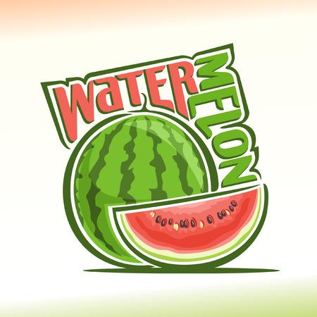 Vector illustration on the theme of watermelon Stock Illustratie