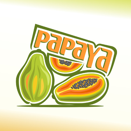 Vector illustration on the theme of papaya