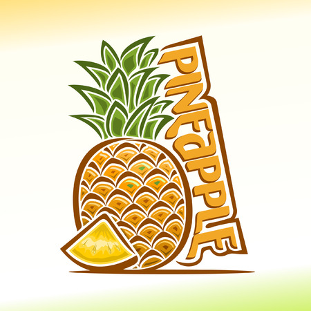 pineapple: Vector illustration on the theme of pineapple
