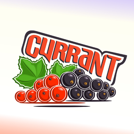 abstract fruit: Vector illustration on the theme of currant