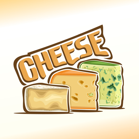 Vector illustration on the theme of cheese