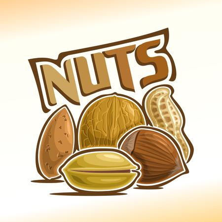 cacahuate: Ilustraci�n sobre el tema de los frutos secos, que consta de almendra, nuez, cacahuete, pistacho y avellanas Vectores