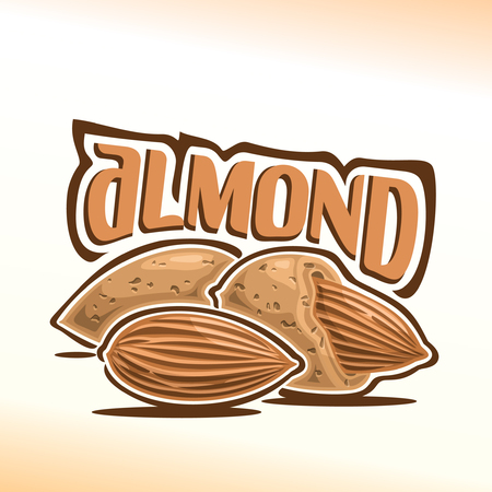 Illustration on the theme for almond nuts, consisting of peeled almond nutlet and two nuts in the nutshell