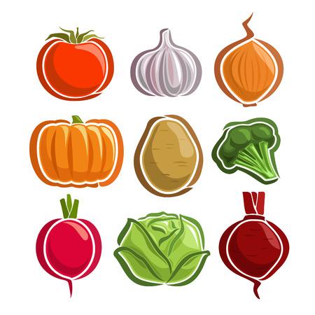 Vector Set Vegetables simple Logo: tomato, garlic, onion, pumpkin, potato, broccoli, radish, cabbage, beetroot; abstract primitive simplistic vegetables logo or minimalistic icon, isolated on white.