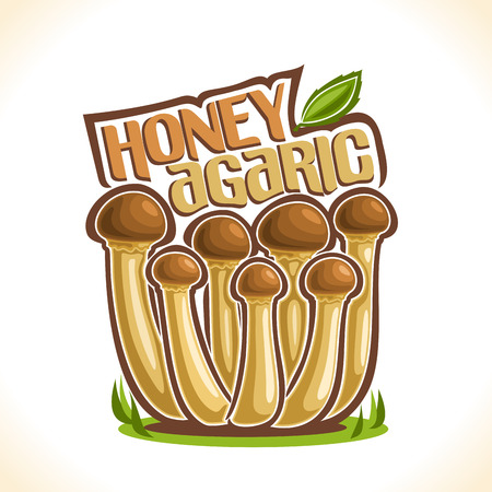 Vector logo Honey Agarics Mushrooms: group of wild mushrooms on ground forest glade, cartoon still life with lettering honey agaric with leaf, outdoors nature label with inscription for edible fungus Illustration