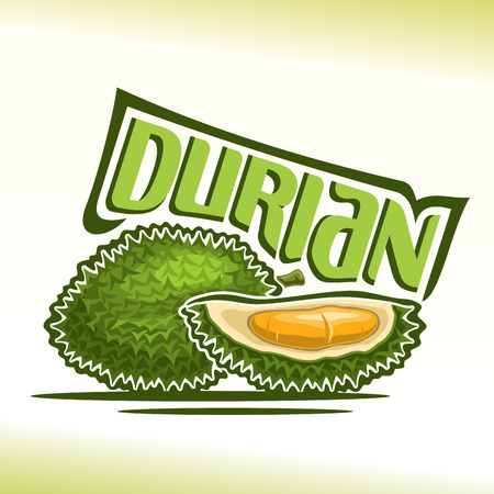 Vector logo Durian Fruit: still life of two green fresh thai durians, sliced ??quarter exotic fruit with flesh of bad smell, abstract icon asian king of fruit with title text for label, isolated on white. Illustration