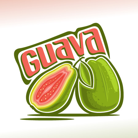 Vector logo Guava Fruit: still life of 2 whole and sliced ??half guava with green leaf, fresh pale pink exotic fruits, abstract cartoon icon amrood or amrud with title text for label, isolated on white.