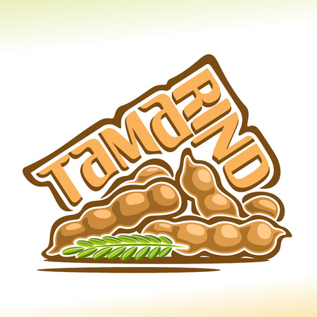 Tamarind Fruit: still life of heap tamarind pod with green branch, group fresh pale brown exotic fruits, abstract cartoon icon tamarindus indica with title text for label.