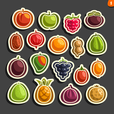 Vector Set of icons of colorful fruits and berries: collection of exsotic fruit primitive logos isolated on black background, set of cartoon simple stickers for juice or candy, abstract fruits pictograms