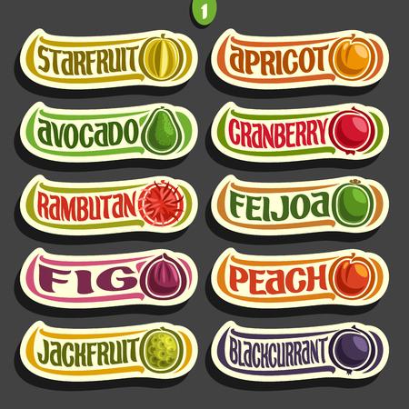 다채로운 과일 및 열매의 벡터 설정 레이블 : 흰색 격리 된 exsotic 과일의 컬렉션 주스 또는 사탕, 추상 과일 만화 간단한 레이블 집합 스톡 콘텐츠 - 83869576