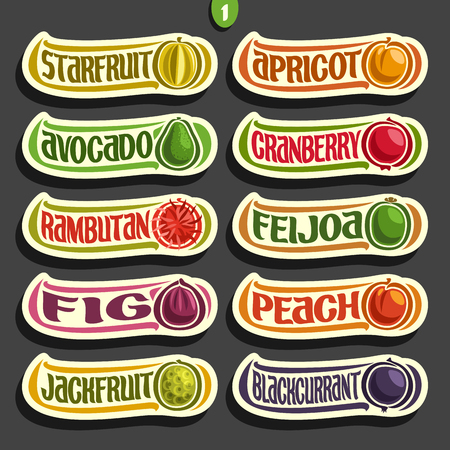 Vector Set of colorful Fruits and Berries Labels: collection of exsotic fruit isolated on white, set of cartoon simple labels for juice or candy, abstract fruits
