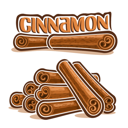 Vector illustrations for Cinnamon spice, brown roll sticks of culinary condiment, heap of group cooking indian cinamon quills, ingredient for baking dessert, label with title text - cinnamon on white. Ilustração