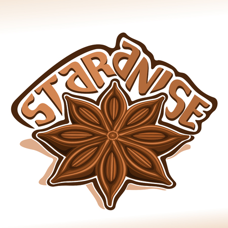 Vector icon for Star Anise: wooden dry pod with brown seeds of aniseed, label with title text - star anise on white, chinese condiment badian, spicy ingredient for drink or baking, indian seasoning. Ilustração