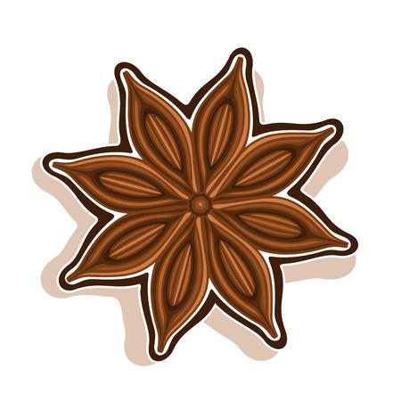 Icône vectorielle pour Star Anise: gousse sèche en bois avec des graines marron, vue d'anis, ingrédient pour cuire l'anis étoilé, épices chinoises bady isolées sur blanc, anis indien de condiment, assaisonnement de cuisson. Banque d'images - 84222682