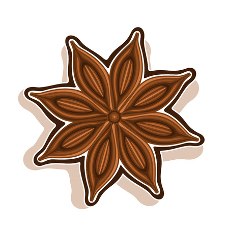 Vector icon for Star Anise: Wooden dry pod with brown seeds aniseed top view, ingredient for baking star anise, chinese spice bady isolated on white, indian condiment anis, cooking seasoning anice. Ilustração