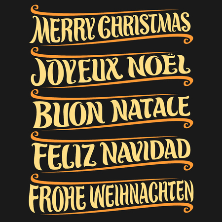 Vector set of greeting text - Merry Christmas in different languages: french joy, noe, italian buon natale, spanish feliz navidad, german frohe weihnachten, drawn christmas decoration on black.