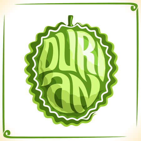 Vector logo for Durian, label with one whole fruit for a pack of dairy, isolated on a white background. Illustration