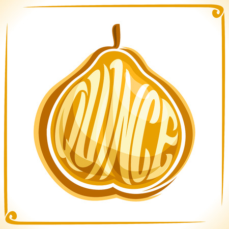 Vector icon for quince fruit, label with one whole fruit for a bottle of freshly baked milk on a white background.