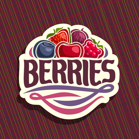 Vector for berries, cut sign with fresh strawberry, red gooseberry, healthy blueberry, cherry berry, ripe raspberry on geometric background, veg mix label with text berries for vegan nutrition.