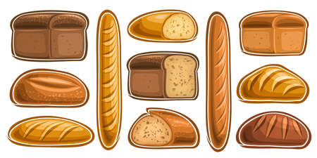 Vector Set of assorted Bread and Bakery, lot collection of 11 cut out illustrations of fresh bread on white background. 스톡 콘텐츠 - 152090880