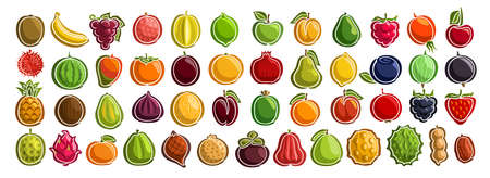 set of fresh Fruits, group of cut out cartoon fruits and berries, various minimal design fruit tags for sweet drinks or ice cream, collection of vegan simple icons isolated on white background.
