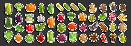 set of Vegetables, group of cut out cartoon indian spices, various minimal design vegetable signs for healthy nutrients, lot collection of agriculture simple icons isolated on black background. 矢量图像