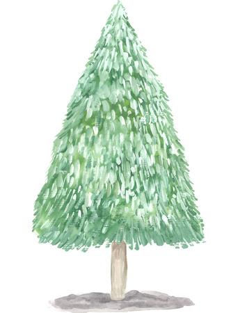 spruce: Watercolor spruce