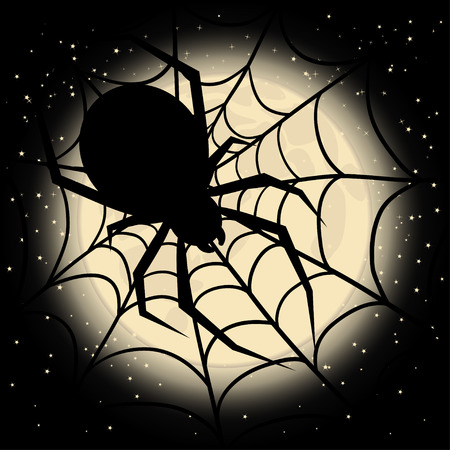 halloween spider: Spider web on a background of the moon on Halloween day Illustration