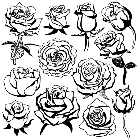 Set of silhouettes of roses
