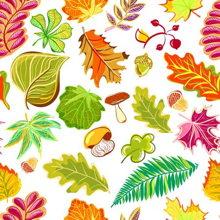 Autumn seamless pattern in hand draw style (ethnic, doodle) 免版税图像 - 133662942