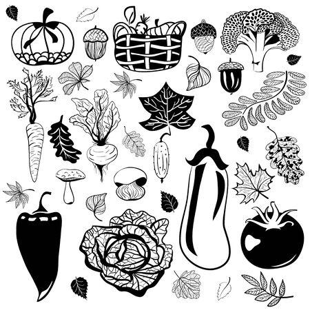 Attributes of autumn. Vegetables, mushrooms, leaves