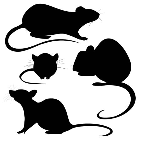 Silhouette of a rat. Rat ornament. Symbol of chinese new year. Zodiac sign of the chinese horoscope 免版税图像 - 133662918