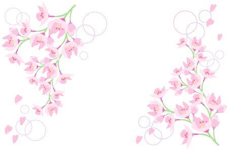 Illustration of cherry blossom petals scattered