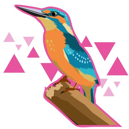 Illustration of a kingfisher with a background