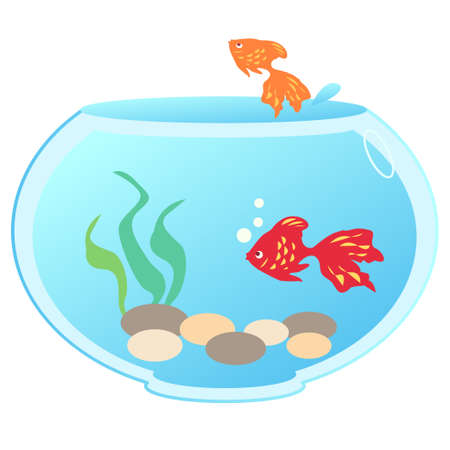 a goldfish bowl with two goldfish