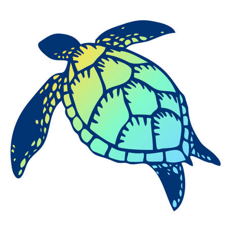 Colorful shell illustration of sea turtles
