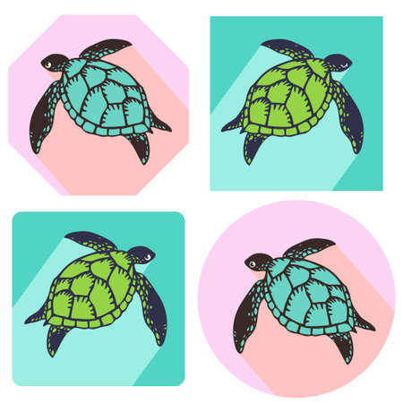 Icon illustration with a different line of sight of sea turtles