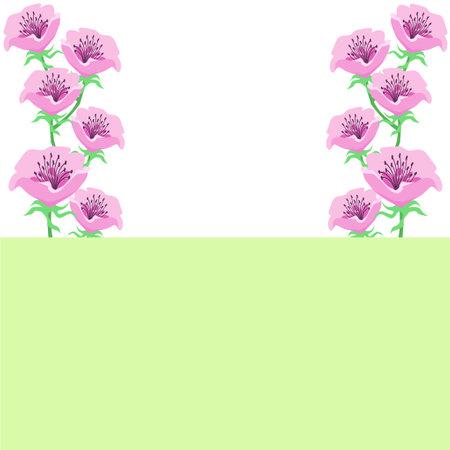 Anemone flower decoration background