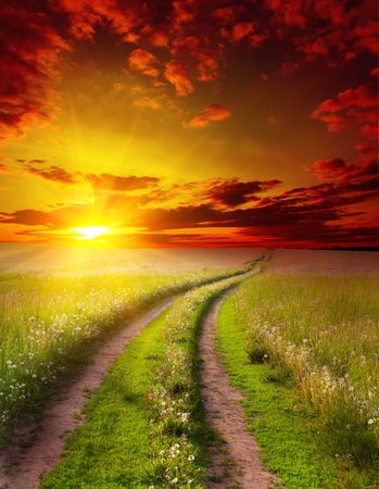 dandelions: Road in meadow under dramatic sunsets light Stock Photo
