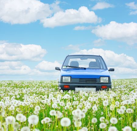 Blue little car in deep meadows herbs under blue sky with airy clouds photo