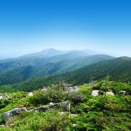 Mountains in taiga Stock Photo - 5758830