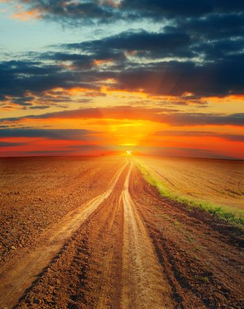 Rural road in field over sunset photo