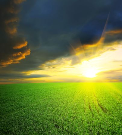 Dramatic sunset over field with grass Stock Photo - 5777355