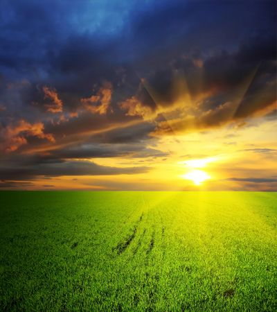 Dramatic sunset over field with grass Stock Photo - 5782627