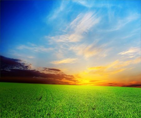 Bright sunset over green meadow Stock Photo - 5783554