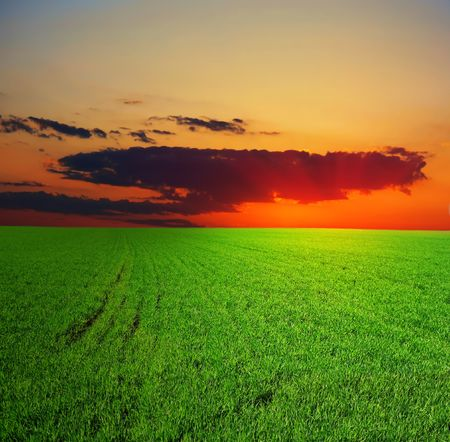 Red sunset over field Stock Photo - 5783541