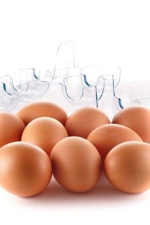 Eggs in plastic case photo