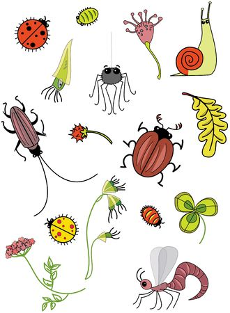 rasterized: Insects. Rasterized copy Stock Photo