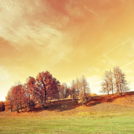 Autumn trees on hill with abstract yellow sky photo